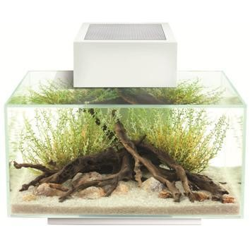 ACQUARIO ASKOLL FLUVAL  EDGE 23 LT. - ACQUARIO   AQUARIUM SCANDICCI